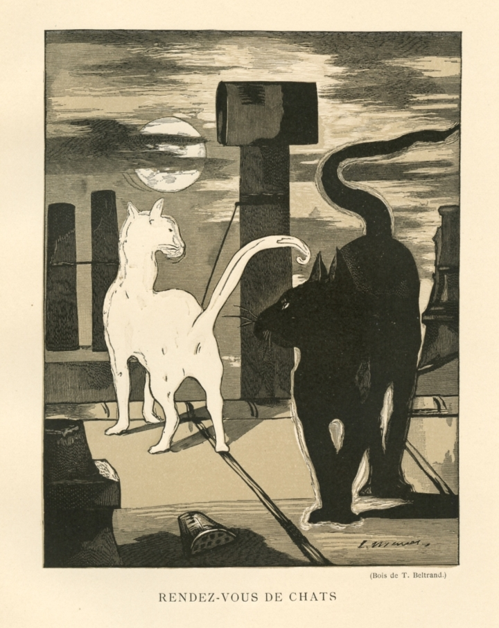 manet_chats